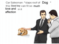 Love, Good, and Boy: Car Salesman: *slaps roof of Dog *  this Good boy can fit so much  love and in it  affection