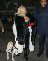 Halloween, Instagram, and Memes: Cardi B rolled into the Bacardi Halloween bash as Cruella Da Vil and brought her Dalmatian friend. See more at TMZ or from our Instagram Story. cardib halloween tmz