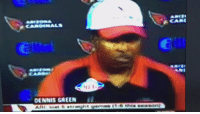 Sports, Bears, and Cardinals: CARDINAL  OENNIS GREEN il The Cardinals, after losing a game to the Bears they probably should've won: https://t.co/h7nXCluJih