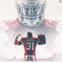Birthday, Memes, and Happy Birthday: CARDINALS  JOHNSON  3 Join us in wishing @AZCardinals RB @DavidJohnson31 a HAPPY BIRTHDAY! 🎉🎉🎉 https://t.co/uAAbF8WnFV