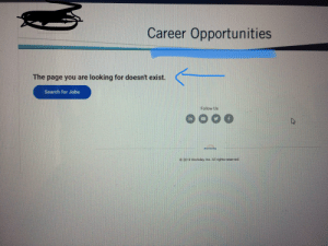 Jobs, Search, and Irl: Career Opportunities  The page you are looking for doesn't exist.  Search for Jobs  Follow Us  in  workdoy  3 2019 Workday Inc. All rights reserved. me irl