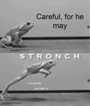 too late: Careful, for he  may  STRONCH  it is too late  god help us