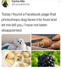 This is amazing 😂: Carina Mia  @CarinaPetrillo  Today I found a Facebook page that  photoshops dog faces into food and  let me tell you, I have not been  disappointed. This is amazing 😂