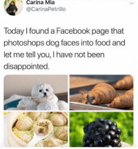 Dog Faces: Carina Mia  @CarinaPetrillo  Today I found a Facebook page that  photoshops dog faces into food and  let me tell you, I have not been  disappointed.