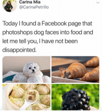 goodnight!!: Carina Mia  @CarinaPetrillo  Today I found a Facebook page that  photoshops dog faces into food and  let me tell you, I have not been  disappointed. goodnight!!