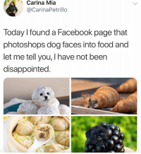 Beer, Disappointed, and Dogs: Carina  Mia  @CarinaPetrillo  Today l found a Facebook page that  photoshops dog faces into food and  let me tell you, I have not beer  disappointed. Dogs_infood