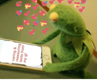 Memes, Tumblr, and Blog: caring &  reassuring  texts from  my gf cutekermit:  making gf memes is my favorite pastime 👩❤️👩