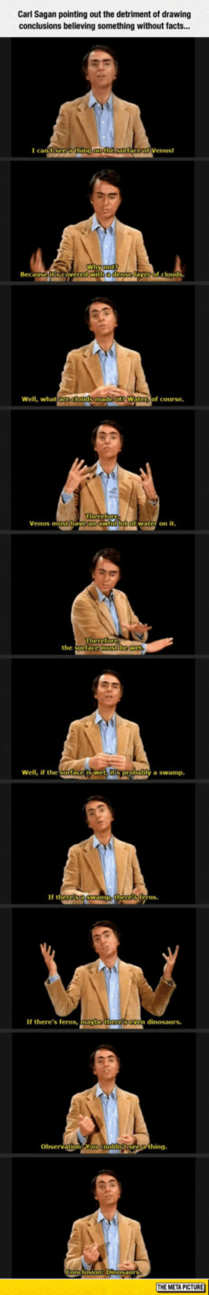 awesomesthesia:  Carl Sagan Has A Very Valid Point: Carl Sagan pointing out the detriment of drawing  conclusions believing something without facts...  I can  Wi  Beca  edense  yerol clouds  Well, what  of course.  Venus mitithave an aw  water on it.  the surtace  Well, if the Surlace  y a swamp.  If th  erns  If there's ferns, mayb  n dinosaurs.  Obsevation Yo  THE META PICTURE awesomesthesia:  Carl Sagan Has A Very Valid Point