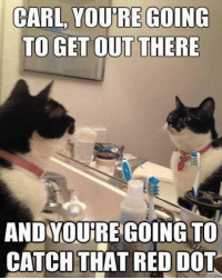 Red, Dot, and Carl: CARL, YOURE GOING  TO GET OUT THERE  AND YOUJRE GOING TO  CATCH THAT RED DOT