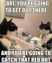 Red, Dot, and Motivation: CARL YOU'RE GOING  TO GET OUTTHERE  AND YOURE GOING TO  CATCHTHAT RED DOT <p>We All Need Some Motivation.</p>