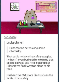 Pusheens: carlsagan:  unclepolymer:  Pusheen the cat making some  chemistry  That cat is not wearing safety goggles,  he hasn't even bothered to clean up that  hasn't even bothered to eleao0g es,  spilled solvent, and he is holding that  Erlenmeyer flask way too close to his  face.  Pusheen the Cat, more like Pusheen the  limits of lab safety
