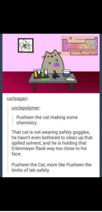 Pusheen, Cat, and Pusheen the Cat: carlsagan:  unclepolymer  Pusheen the cat making some  chemistry  That cat is not wearing safety goggles,  he hasn't even bothered to clean up that  spilled solvent, and he is holding that  Erlenmeyer flask way too close to his  face.  Pusheen the Cat, more like Pusheen the  limits of lab safety Puaheen the can