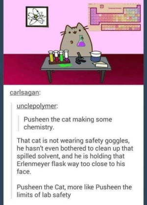 Pusheen thr chemistry cat: carlsagan:  unclepolymer.  Pusheen the cat making some  chemistry.  That cat is not wearing safety goggles,  he hasn't even bothered to clean up that  spilled solvent, and he is holding that  Erlenmeyer flask way too close to his  face.  Pusheen the Cat, more like Pusheen the  limits of lab safety Pusheen thr chemistry cat