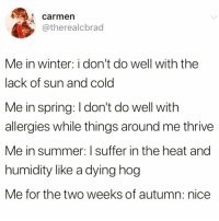 Funny, Winter, and Summer: carmen  @therealcbrad  Me in winter: i don't do well with the  lack of sun and cold  Me in spring: I don't do well with  allergies while things around me thrive  Me in summer: I suffer in the heat and  humidity like a dying hog  Me for the two weeks of autumn: nice Too real @_theblessedone 😅