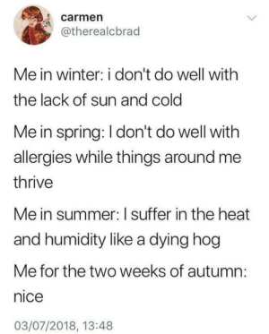 Winter, Summer, and Heat: carmen  @therealcbrad  Me in winter: i don't do well with  the lack of sun and cold  Me in spring: I don't do well with  allergies while things around me  thrive  Me in summer: I suffer in the heat  and humidity like a dying hog  Me for the two weeks of autumn:  nice  03/07/2018, 13:48 One of the most relatable things Ive ever seen