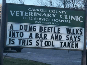 Taken, Home, and Hospital: CARROLL COUNTY  FULL SERVICE HOSPITAL  YNN WIMMER D.V.M  A DUNG BEETLE LKS  INTO A BAR AND SAYS  IS THIS STOOL TAKEN This vet in my home town always delivers with the jokes (i.redd.it)