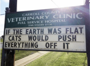 Cats, Earth, and Hospital: CARROLL COUNTY  VETERINARY CLINIC  FULL SERVICE HOSPITAL  LYNN WIMMER D.V.M.  IF THE EARTH WAS FLAT  CATS  EVERYTHING OFF IT  WOULD PUSH Truth.