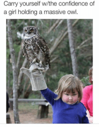 Confidence, Memes, and Girl: Carry yourself w/the confidence of  a girl holding a massive owl