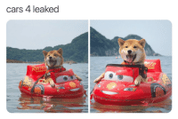 Cars, Doge, and Memes: cars 4 leaked  95 22 Extremely Pointless Memes To Soothe The Soul #RandomMemes #FunnyMemes #Shiba #Doge #DogMemes #CuteDog