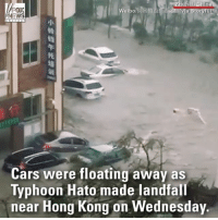 WATCH: Flood waters from the deadly Typhoon Hato lift cars right off the street in China.: Cars were floating away as  Typhoon Hato made landfall  near Hong Kong on Wednesday WATCH: Flood waters from the deadly Typhoon Hato lift cars right off the street in China.