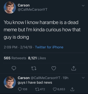 Bad, Dank, and Iphone: Carson  @CallMeCarsonYT  You know l know harambe is a dead  meme but I'm kinda curious how that  guy is doing  2:09 PM . 2/14/19 Twitter for iPhone  565 Retweets 8,121 Likes  Carson @CallMeCarsonYT 19h  guys I have bad news  108  472 6,653 MeIrl by pdiggy40 MORE MEMES