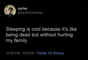 hurting: carter  @carterhambley  Sleeping is cool because it's like  being dead but without hurting  my family  5:05 PM 3/12/19 Twitter for iPhone