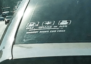 I bet his Ford Fusion is a real ass magnet.: CAS GRASS or ASS  NOOODY RIDES FOR FREE I bet his Ford Fusion is a real ass magnet.