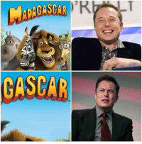 """Memes, Http, and Rotten Tomatoes: CASCAR  TM <p>Elon when he worked at Rotten Tomatoes via /r/memes <a href=""""http://ift.tt/2EGAblZ"""">http://ift.tt/2EGAblZ</a></p>"""