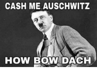 The collision of Nazi memes and garden-variety shitty memes.: CASH ME AUSCHWITZ  HOW BOW DACH The collision of Nazi memes and garden-variety shitty memes.
