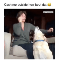 ⠀ 🌱Who's Mom Is This! 😂: Cash me outside how bout dat  ig: a bestvinges ⠀ 🌱Who's Mom Is This! 😂