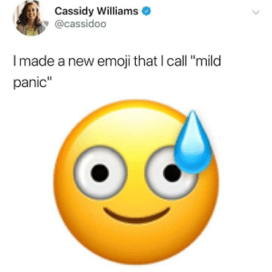 "Mild: Cassidy Williams  @cassidoo  Imade a new emoji that I call ""mild  panic"""