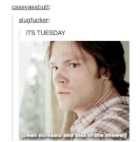 Memes, Scream, and Shower: cassyassbutt:  slugfucker:  ITS TUESDAY  [Dean screams and dies in the shower Rip Dean