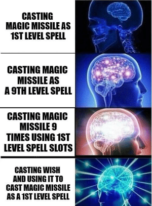 Theres always the one guy: CASTING  MAGIC MISSILE AS  1ST LEVEL SPELL  CASTING MAGIC  MISSILE AS  A 9TH LEVEL SPELL  CASTING MAGIC  MISSILE 9  TIMES USING 1ST  LEVEL SPELL SLOTS  CASTING WISH  AND USING IT TO  CAST MAGIC MISSILE  AS A1ST LEVEL SPELL Theres always the one guy