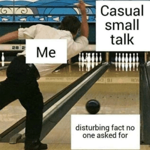 Dank, Memes, and Target: Casual  small  talk  28 2  disturbing fact no  one asked for Meirl by LordofHares MORE MEMES