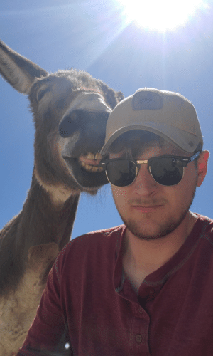 Casually taking a selfie with my donkey.: Casually taking a selfie with my donkey.