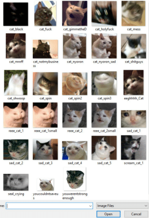 just-one-more-bridge-to-cross:  5u5:the list goes on  Tag yourself: I'm eeghhhh_Cat: cat black  cat fuck  cat gimmetheD cat_holyfuck  cat_mnrff cat_notmybusine cat_nyoron cat_nyoron_sad cat shitguys  cat shwoop  cat_spin  cat_spin2  cat_spin3  eeghhhh_Cat  reee cat  e cat_1sma ee cat 2 reee cat_2small  sad cat 1  sad_cat 2  sad cat 3  sad_cat_4  sad cat_5  scream_cat 1  seal crying youcouldntsaveu youwerentstrong  enough  me:  Image Files  Open  Cancel just-one-more-bridge-to-cross:  5u5:the list goes on  Tag yourself: I'm eeghhhh_Cat