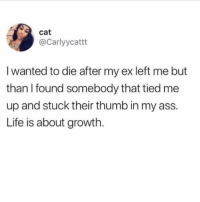 Ass, Life, and Good Morning: cat  @Carlyycattt  I wanted to die after my ex left me but  than I found somebody that tied me  up and stuck their thumb in my ass.  Life is about growth Good Morning, yall! ( @carlyycattt )