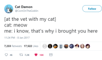 MeIRL, Cat, and Why: Cat Damon  @CornOnTheGoblin  Follow  [at the vet with my cat]  cat: meow  me: i know, that's why i brought you here  11:24 PM-8 Jan 2017  7,233 Retweets 17,522 Likes  00 : DO  O meirl