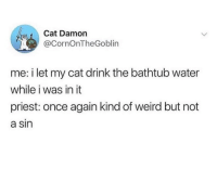 Weird, Time, and Water: Cat Damon  @CornOnTheGoblin  me: i let my cat drink the bathtub water  while i was in it  priest: once again kind of weird but not  a sin Confession time