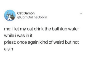 Weird, Water, and Cat: Cat Damon  @CornOnTheGoblin  me: i let my cat drink the bathtub water  while i was in it  priest: once again kind of weird but not  a sin