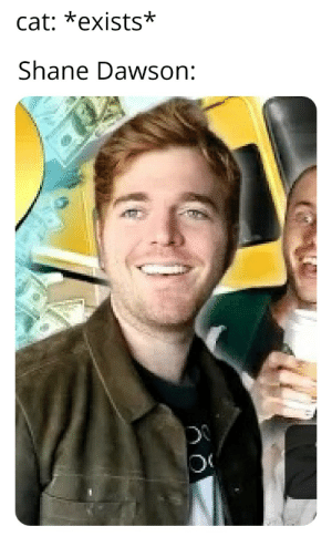 I just made this: cat: *exists*  Shane Dawson: I just made this