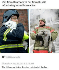 Cat from Denmark vs cat from Russia  after being saved from a fire  1030 Comments  GforceDz Sep 26, 2018, 6:19 AM  The difference is the Russian cat started the fire.