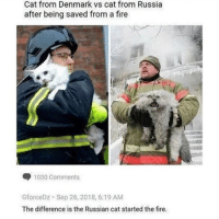 Fire, Memes, and Denmark: Cat from Denmark vs cat from Russia  after being saved from a fire  1030 Comments  GforceDz Sep 26, 2018, 6:19 AM  The difference is the Russian cat started the fire. Communism good. Fire good. Vodka good. via /r/memes http://bit.ly/2CZRA5m