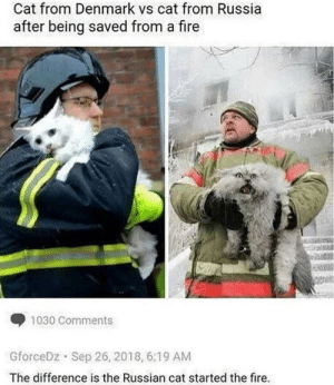 Dank, Fire, and Memes: Cat from Denmark vs cat from Russia  after being saved from a fire  1030 Comments  GforceDz Sep 26, 2018, 6:19 AM  The difference is the Russian cat started the fire. The right cat looks like the devil. by WingleWangler MORE MEMES