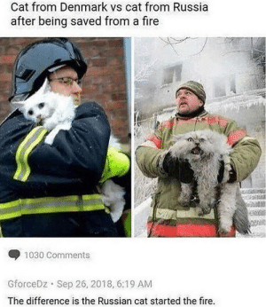 Cyka blyat, cat.: Cat from Denmark vs cat from Russia  after being saved from a fire  1030 Comments  Sep 26, 2018, 6:19 AM  GforceDz  The difference is the Russian cat started the fire. Cyka blyat, cat.