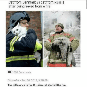 Fire, Denmark, and Russia: Cat from Denmark vs cat from Russia  after being saved from a fire  1030 Comments  GforceDz Sep 26, 2018, 6:19 AM  The difference is the Russian cat started the fire. I'm Russian I can confirm also press what do you think of Denmark