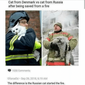 Seems legit: Cat from Denmark vs cat from Russia  after being saved from a fire  1030 Comments  GforceDz Sep 26, 2018, 6:19 AM  The difference is the Russian cat started the fire. Seems legit