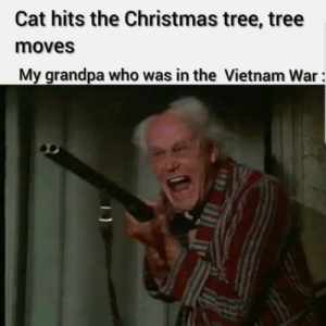 I was in nam: Cat hits the Christmas tree, tree  moves  My grandpa who was in the Vietnam War: I was in nam