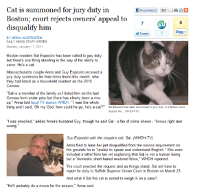 "smiletowardstheheavens:  toralei: jury duty cat  : Cat is summoned for jury duty in  Boston: court reiects owners' appeal to  disqualify him  7  0  Digg t  Tweet  BY MEENA HARTENSTEIN  DAILY NEWS STAFF WRITER  Monday, January 17, 2011  Boston resident Sal Esposito has been called to jury duty  but there's one thing standing in the way of his ability to  serve: He's a cat  Massachusetts couple Anna and Guy Esposito received a  jury duty summons for their feline friend this month, who  they had listed as a household resident on the 2010  Census  ""Sal is a member of the family so l listed him on the last  Census form under pets but there has clearly been a mix  up,"" Anna told local TV station WHDH. ""T read the whole  thing and said, Oh my God, how could he go, he's a cat?  Sa Esposito has been summoned to jury duty in a Boston court,  despite the... WHDH-TV)  ""I was shocked,"" added Anna's husband Guy, though he said Sal a fan of crime shows - ""knows right and  wrong  Guy Esposito with the couple's cat, Sal. (WHDH-TV)  Anna filed to have her pet disqualified from the service requirement on  the grounds he is ""unable to speak and understand English."" She even  included a letter from her vet explaining that Sal is not a human being  but a ""domestic short-haired neutered feline,"" WHDH reported  beingl  ut a domestic  The court rejected the request and as things stand, Sal will have to  report for duty to Suffolk Superior Crown Court in Boston on March 23  And what if Sal the cat is asked to weigh in on a case?  ""He'll probably do a meow for the answer,"" Anna said smiletowardstheheavens:  toralei: jury duty cat"