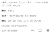 What Cat: cat: meows from the other side  of the house  me: WHAT  cat: continues to meovw  me: IM IN THE LIVING ROOM  Source: theannieplanet  208,718 notes